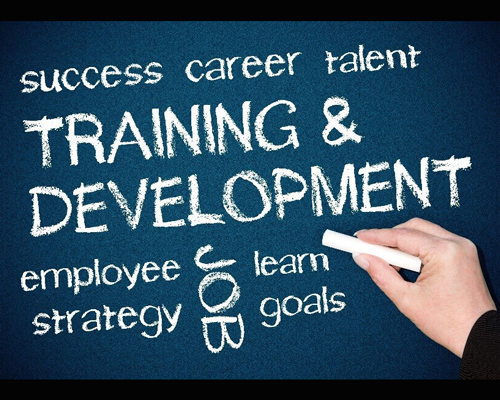 Employee Training Key Terms