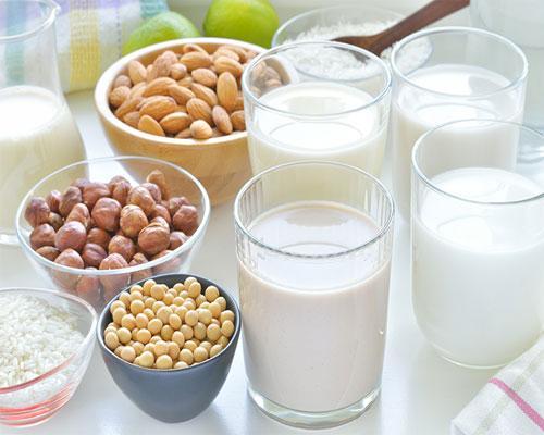 plant-based alternative milk options