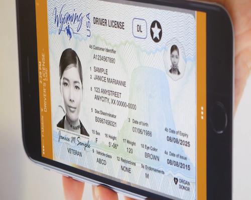 Digital Driver's License
