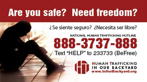 human trafficking hotline sticker