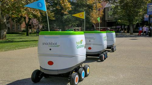 a fleet of snackbots