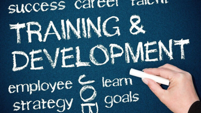 Employee Training Must-Dos