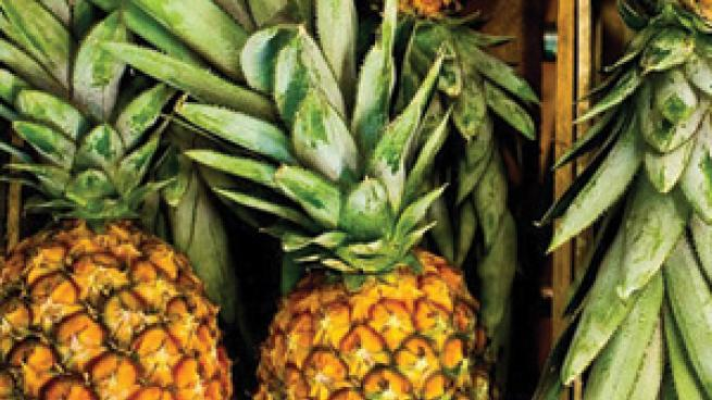 multiple pineapples
