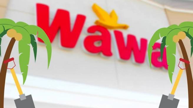 Wawa is building its first three locations in the South Florida city.