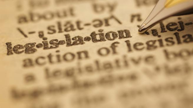 legislation in the dictionary