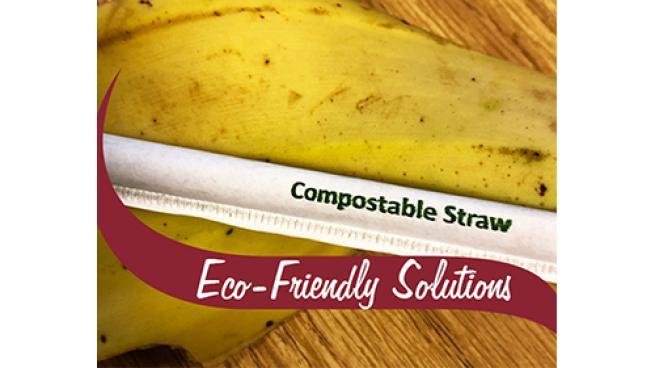 Stewart's compostable straws