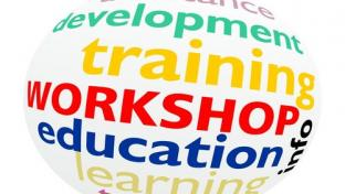 An image showing the words training, education, development and workshops