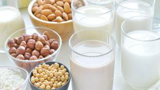 plant-based alternative milk options