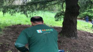 7-Eleven associate planting tree as part of RENEW