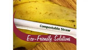 Stewart's compostable straws